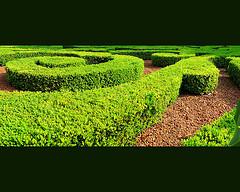 source de l'illustration : Sources - FlickR Creative commons - Labyrinthe à la francaise/par tonton copt